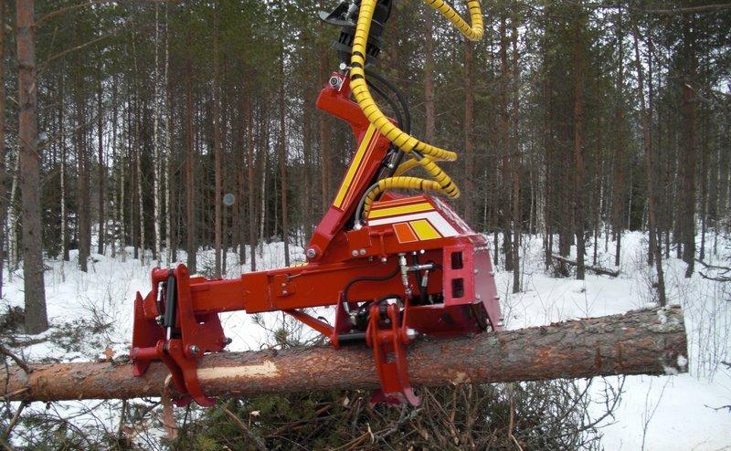 Lesní hospodářství - těžba dřeva